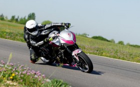 FZ6 Roadster cup